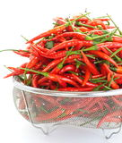 Group of red chilies Stock Photography
