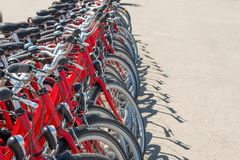 Group of red city bicycles. Parking on the street Royalty Free Stock Images
