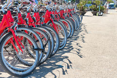 Group of red city bicycles Stock Photography