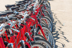 Group of red city bicycles Stock Photos
