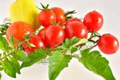 A group of red fresh tomatoes and one pepper Royalty Free Stock Photography
