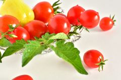 A group of red fresh tomatoes and one pepper Royalty Free Stock Photo