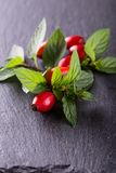 Group of red hips with green leaves on black stone Stock Photos