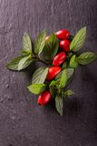 Group of red hips with green leaves on slate Stock Photo