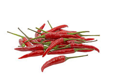 Group of red hot chilies Royalty Free Stock Image