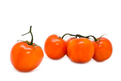 Group of red juicy tomatoes Royalty Free Stock Images