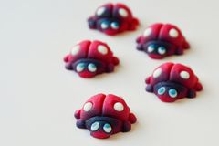 Group of red ladybugs with blue eyes stock images