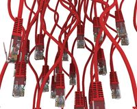 Group of red network cable Royalty Free Stock Image