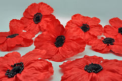 Group of Red poppy brooch jewellery Royalty Free Stock Photo