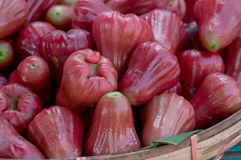 Group of Red rose apple in basket Royalty Free Stock Photos