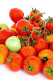 Group of red tomatoes with one green on white background Royalty Free Stock Photos