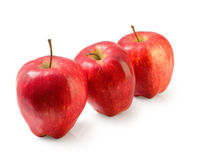 Group of red Washington apple isolated clipping path. Stock Photography