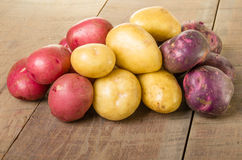 Group of red white and blue potatoes Stock Image
