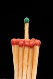 Group of red wooden matches with green match. In the centre, isolated on black background Stock Photo