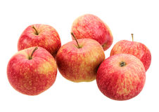 Group of red-yellow apples. Stock Photos