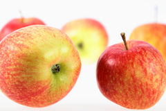 Group of red-yellow apples. Royalty Free Stock Images