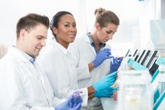 Group of researchers using scientific technology for test of ger Royalty Free Stock Photo