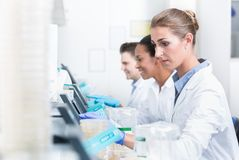 Group of researchers during work on devices in laboratory stock photography