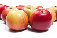 Group of ripe apples on a white background Royalty Free Stock Photos