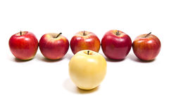 Group of ripe apples on a white background Royalty Free Stock Photo