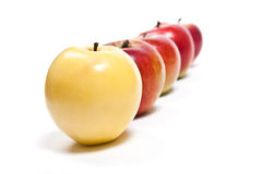 Group of ripe apples on a white background Royalty Free Stock Image