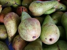 Group of ripe fresh pears. For background Stock Images