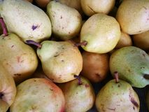 Group of ripe fresh pears. For background Royalty Free Stock Image