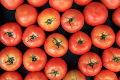 Group of ripe fresh red tomatoes on a market Royalty Free Stock Images