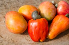 Cashew apples and mangoes stock photo