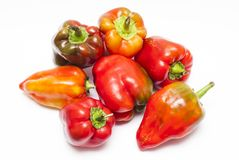 Ripe peppers Royalty Free Stock Photography