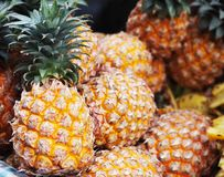 Group of  ripe pineapple in abnormal form. Group of fresh ripe pineapple in abnormal form Royalty Free Stock Images