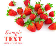 Group of a ripe strawberry royalty free stock photo