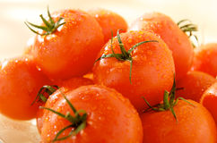 Group of ripe tomatoes. Group of ripe wet tomatoes royalty free stock image