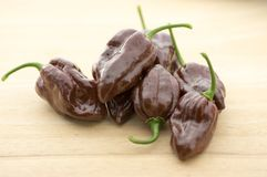Group of ripened capsicum chinenses very hot peppers on wooden table, Habanero chocolate. Ingredient Stock Image