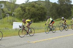 A group of road bicyclists traveling across highway 58 in CA Stock Photography