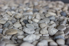 Group of Round Pebbles Royalty Free Stock Photography