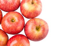 A Group Of Royal Gala Apple X Royalty Free Stock Photography