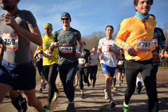 Group of runners Royalty Free Stock Photos