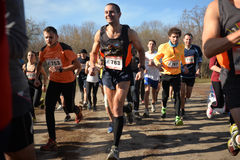 Group of runners Royalty Free Stock Images