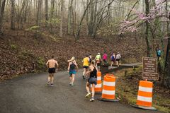 Group of Runners Competing in the 2019 Blue Ridge Marathon