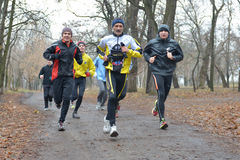Group of runners in the park Royalty Free Stock Image