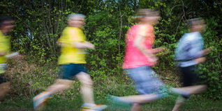 Group of runners in a race Royalty Free Stock Image