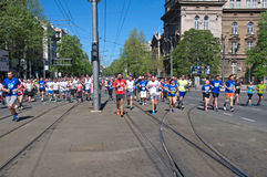Group of runners running marathon race in Belgrade, Serbia Stock Images
