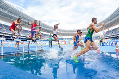 Group of Runners Running on Watery Track during Daytime Stock Photos