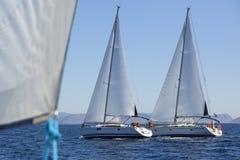 Group of sail yachts in regatta near a coast. Sport. Stock Photo