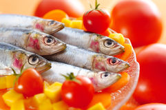 Group of sardines on different vegetables Royalty Free Stock Photo