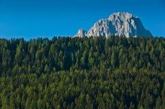 Group Sassolungo and forest, Dolomites. Sassolungo panoramic view, Dolomites - Italy stock photo