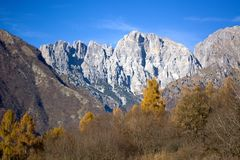 The group of Schiara and the Gusela  del Vescova, Dolomites, Belluno Royalty Free Stock Images