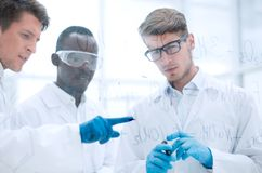 Group of scientists discussing chemical formulas stock image