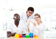 Group of scientists examining test-tubes Stock Image